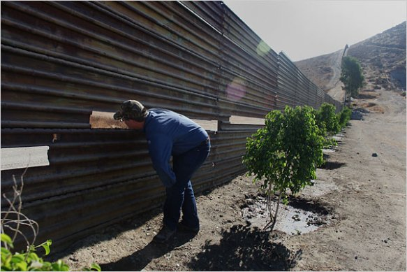 Mr. Vollmann peering on the Mexican side of the border fence.  Photo: Monica Almeida/The New York Times